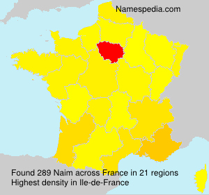 Surname Naim in France