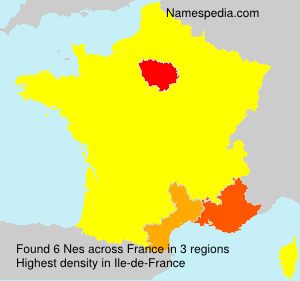 Surname Nes in France