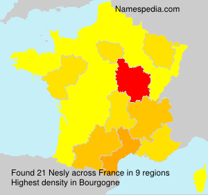 Surname Nesly in France