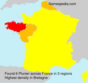 Plunier