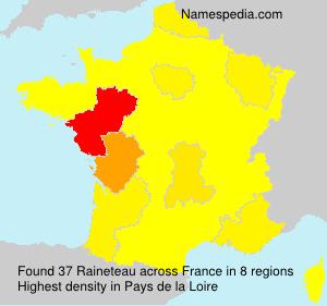 Raineteau