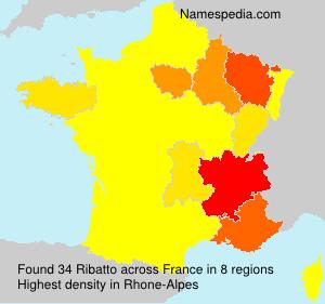 Surname Ribatto in France