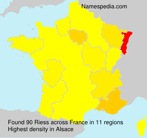 Surname Riess in France