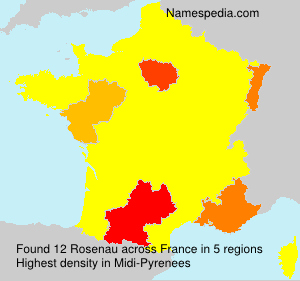 Surname Rosenau in France