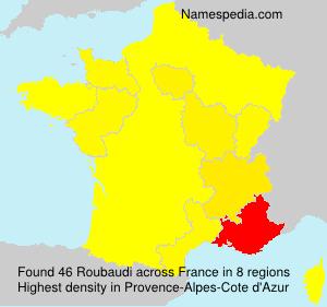 Roubaudi