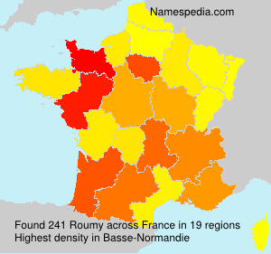 Surname Roumy in France