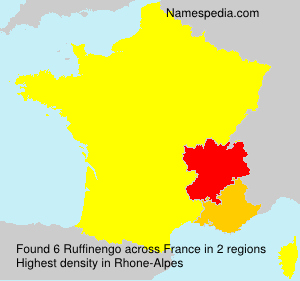 Surname Ruffinengo in France