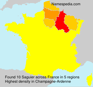 Surname Saguier in France