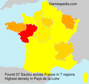 Surname Saulou in France