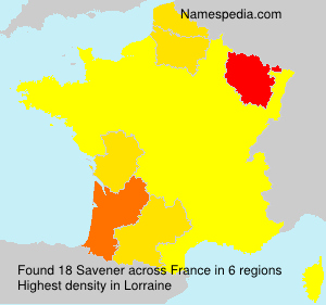 Surname Savener in France