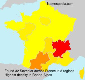 Savenier