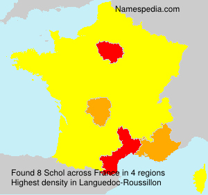 Surname Schol in France