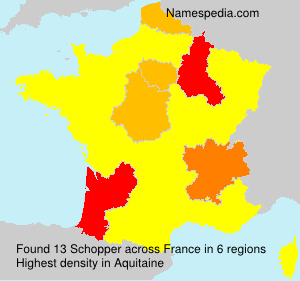 Surname Schopper in France