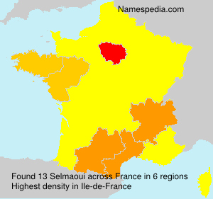 Surname Selmaoui in France