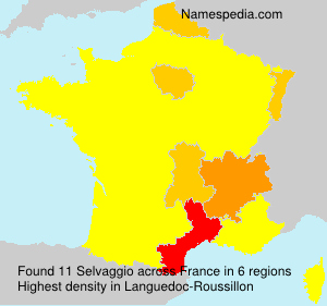 Surname Selvaggio in France