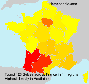 Surname Selves in France