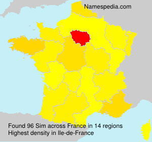 Surname Sim in France