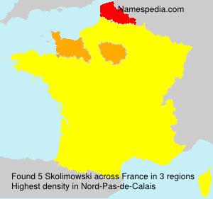 Surname Skolimowski in France