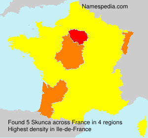 Surname Skunca in France