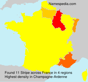 Surname Stripe in France
