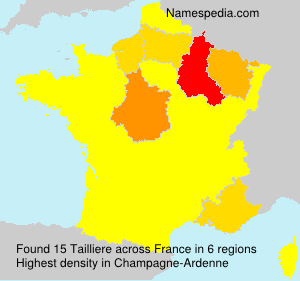 Tailliere