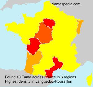 Surname Tame in France