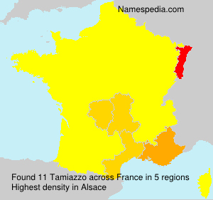 Surname Tamiazzo in France