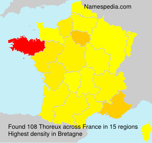Surname Thoreux in France