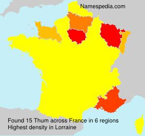 Surname Thum in France