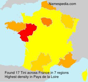 Surname Tini in France