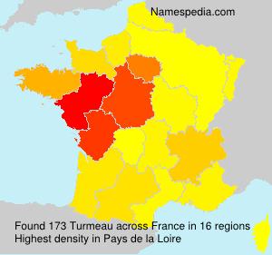 Turmeau
