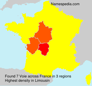 Surname Voie in France