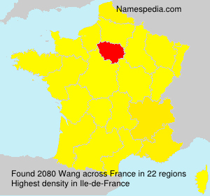 Surname Wang in France