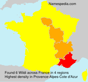 Surname Wildi in France