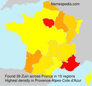 Surname Zuin in France