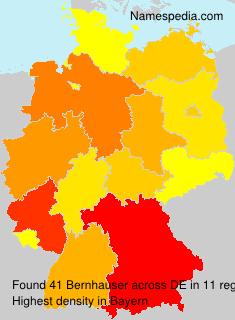 Bernhauser