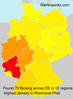 Surname Bicking in Germany