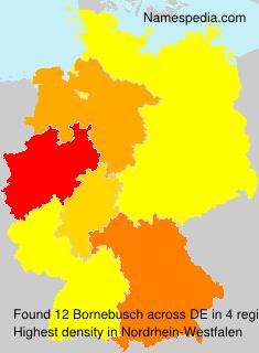 Bornebusch