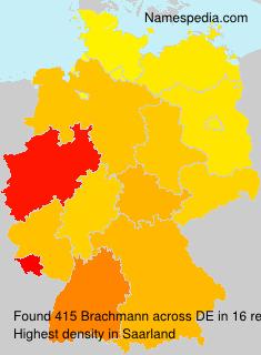 Brachmann