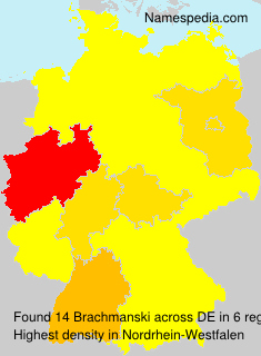 Brachmanski