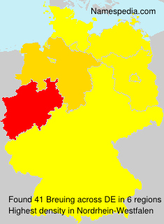 Surname Breuing in Germany