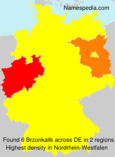 Brzonkalik