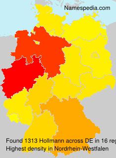 Hollmann