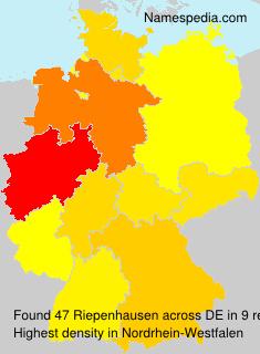 Riepenhausen