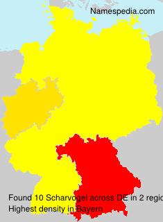 Scharvogel