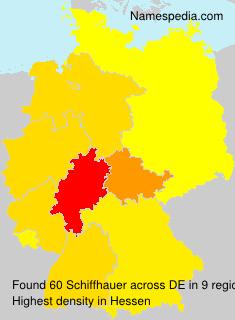 Schiffhauer