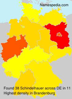 Schindelhauer