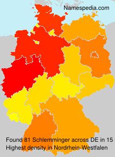 Schlemminger