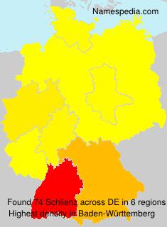 Schlienz