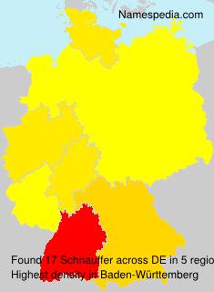 Schnauffer